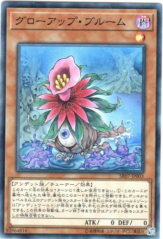 グローアップ・ブルーム (Super/SR07-JP003)③闇1