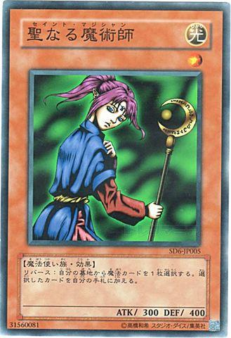 聖なる魔術師 (N/R)③光1
