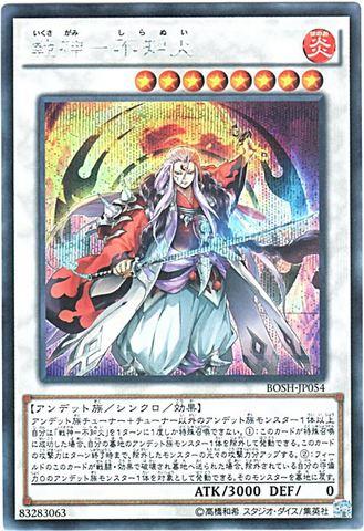 戦神-不知火 (Secret/BOSH-JP054)