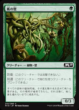 蔦の壁//M19-210/C/緑