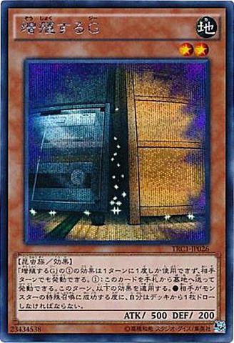 増殖するG (Secret)・20thLC③地2