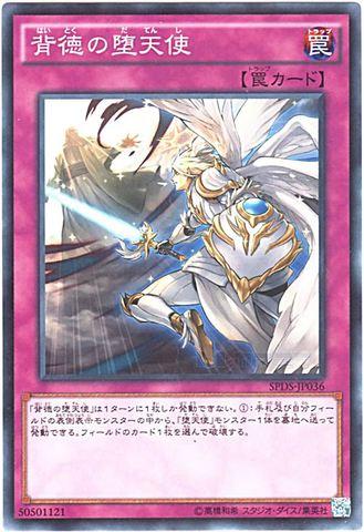 背徳の堕天使 (N/N-P/SPDS-JP036)