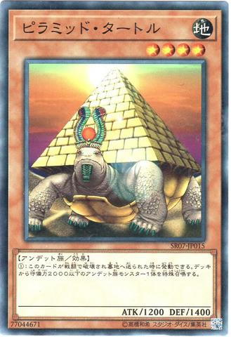ピラミッド・タートル (N/R)③地4