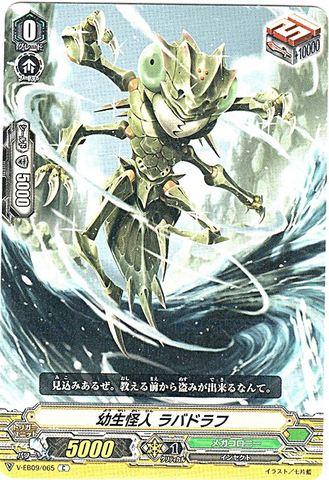 幼生怪人 ラバドラフ C VEB09/065(メガコロニー)
