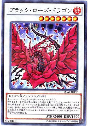 ブラック・ローズ・ドラゴン (N-Parallel/20AP-JP067)