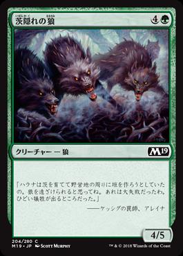 茨隠れの狼//M19-204/C/緑