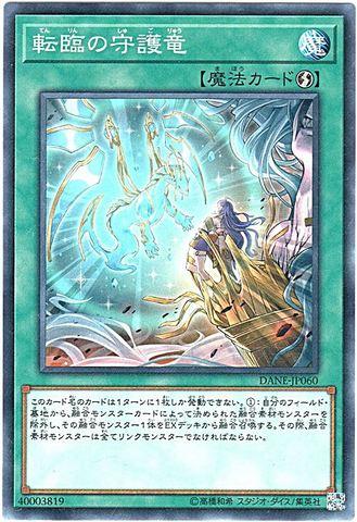 転臨の守護竜 (Normal/DANE-JP060)