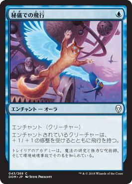 秘儀での飛行//DOM-043/C/青