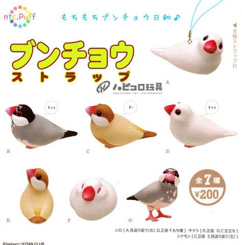 <奇譚クラブ>ストラップ!文鳥・5種