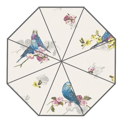 折り畳み傘!セキセイインコ