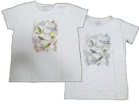 Tシャツ!インコ・アウトレット