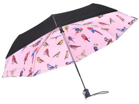 折り畳み傘!インコ&小鳥