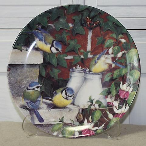 <DM>飾り皿!おはよう・四十雀