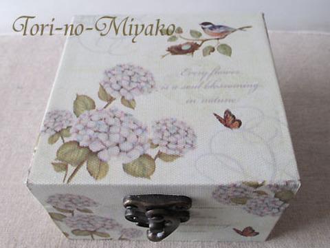 <あまの>ボックスS!四十雀と紫陽花