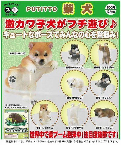 <奇譚クラブ>PUTITTO 柴犬