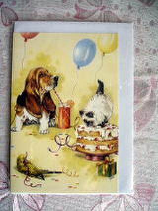 グリーティングカード セキセイインコと犬と猫