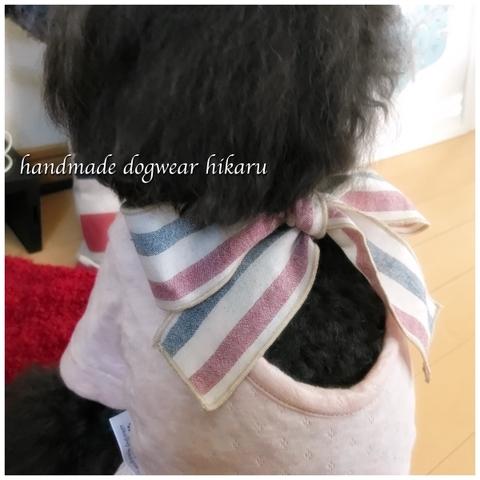 半袖背中開きトップス(リボン) 手作りワンコ服