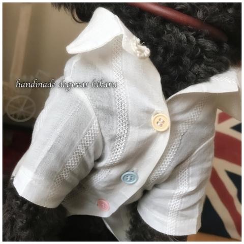 半袖開襟シャツ 手作りワンコ服