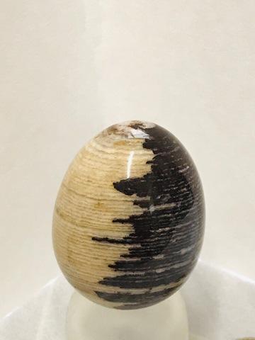 【時の卵】