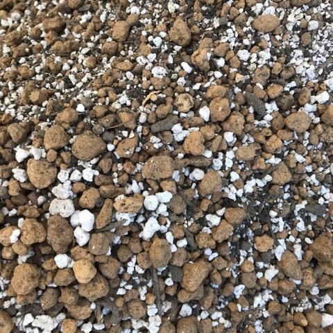 【崩れにくい二本線の硬質赤玉使用】南国植物を美しく咲かせるための秘伝の培養土 5L(レアアース7%・有機初期肥料・根腐れ防止成分入り)・プルメリアやハイビスカスなどの花咲く南国植物専用に設計した高級培養土