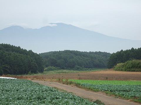 フラワーエッセンス 浅間山