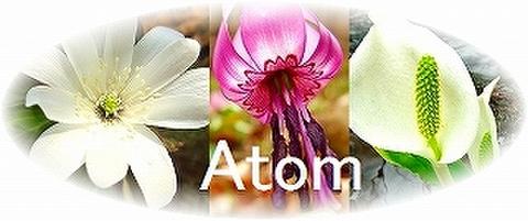 Atom・スプレー