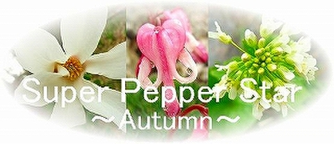Super Pepper Star・セット(レメディ+スプレー)