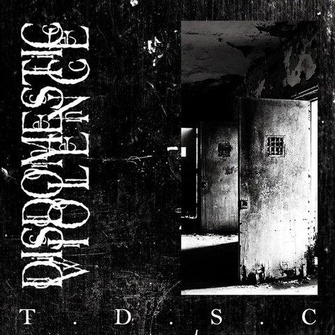 DISDOMESTIC VIOLENCE - T.D.S.C