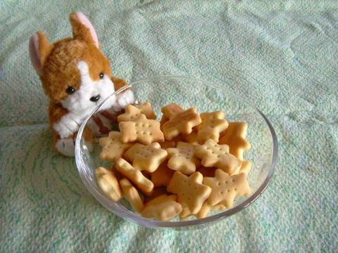 豆乳クッキー(100g)