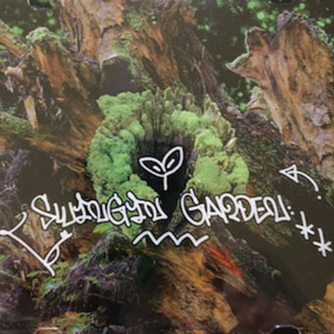 MALTA swinging garden MIX CD
