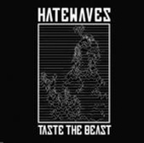 HATEWAVES taste the beast 7inch