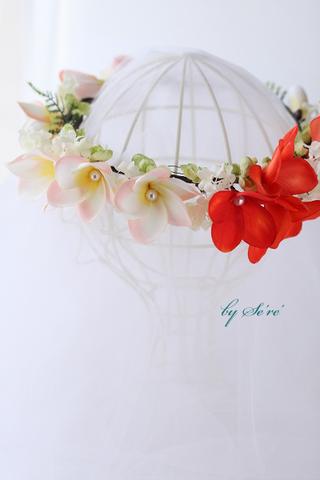 Plumeria-オランジュ花冠