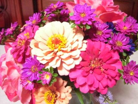 自然栽培 お試し切花