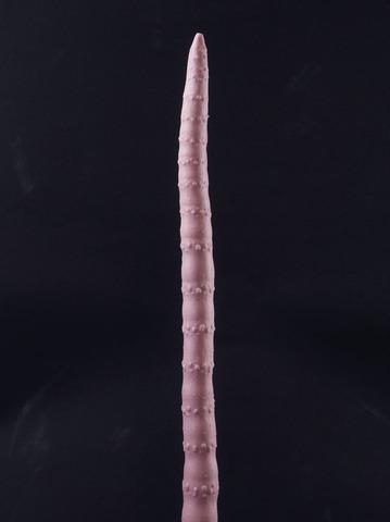 ワームスB(ワームタイプ)worms B (worm type)