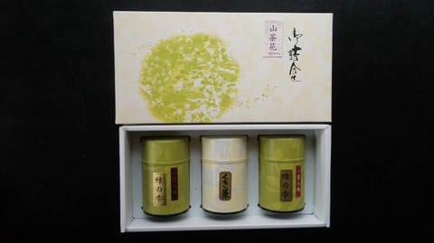 山茶花 sazanka