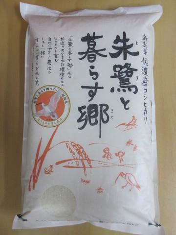令和元年産特別栽培米新潟佐渡こしひかり-5kg