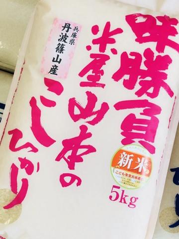 令和元年兵庫県篠山産こしひかり-5kg