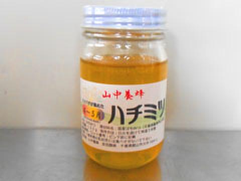はちみつ・4~5月の花・150g (千葉県富津市山中産)
