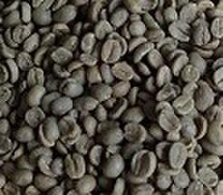 ホンジュラス     200㌘ 豆