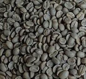 コロンビアスプレモ  100㌘ 豆