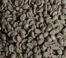 パプアニューギニア   100㌘ 豆