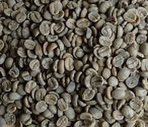 ブラジルセラード   100㌘ 豆