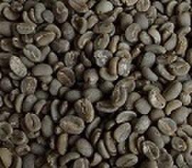 マンデリン      100㌘ 豆