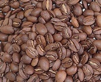 オーシャンブレンド    100㌘ 豆