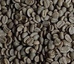 ペルー      200㌘ 豆