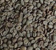 モカマタリ      100㌘ 豆