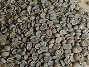 キリマンジャロ      200㌘ 豆