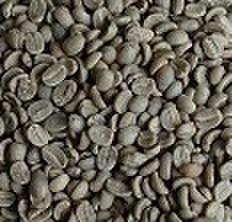 メキシコ       100㌘ 豆