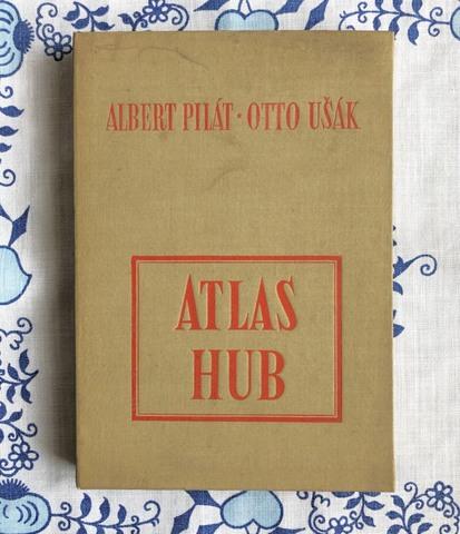 きのこ図鑑/ Atlas hub