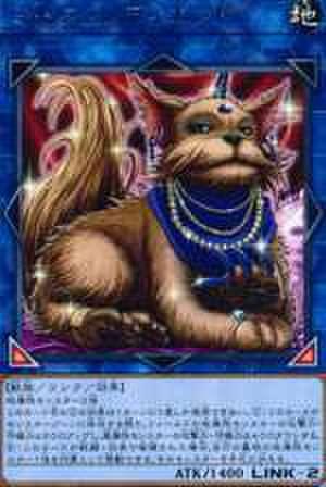 【買取】ミセス・レディエント R [COTD-JP052]